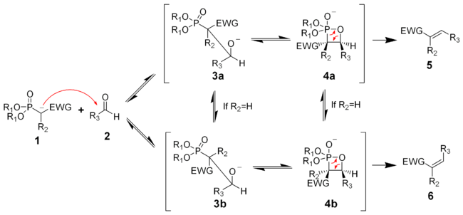 The mechanism of the Horner-Wadsworth-Emmons reaction